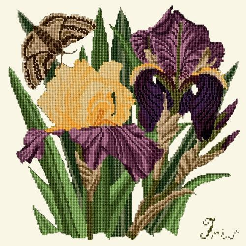 Iris Needlepoint Kit Elizabeth Bradley Design Winter White