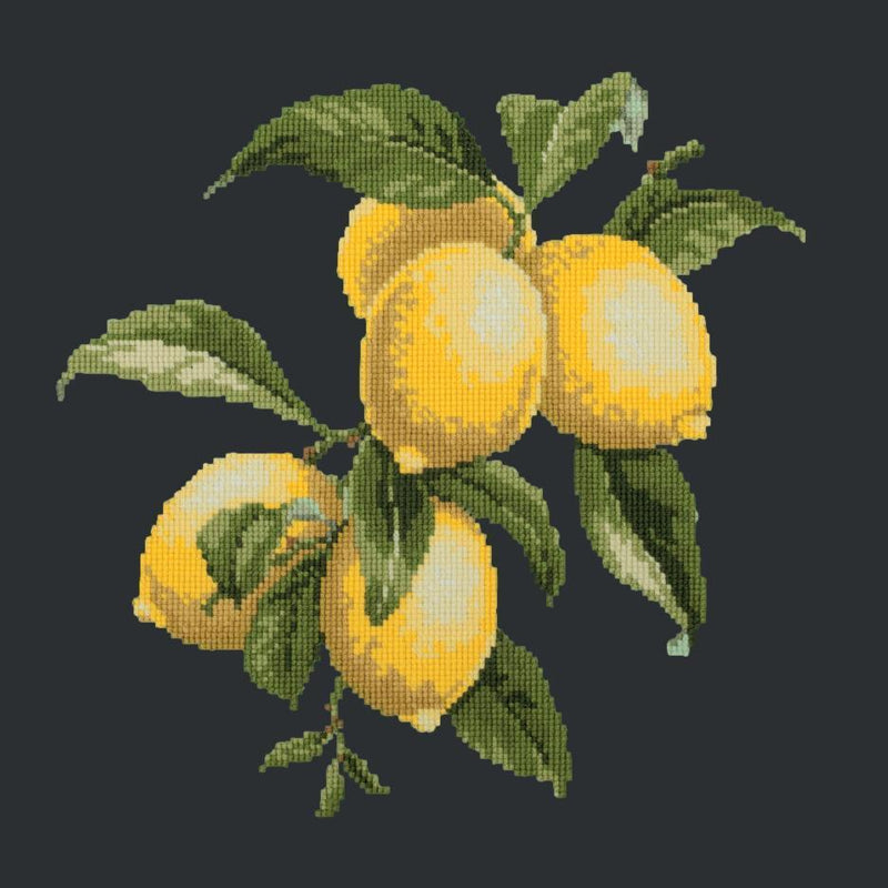 Lemons Needlepoint Kit Elizabeth Bradley Design Black