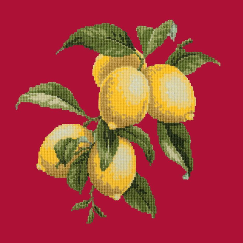 Lemons Needlepoint Kit Elizabeth Bradley Design Bright Red