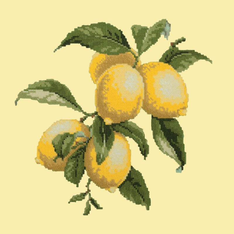 Lemons Needlepoint Kit Elizabeth Bradley Design Butter Yellow