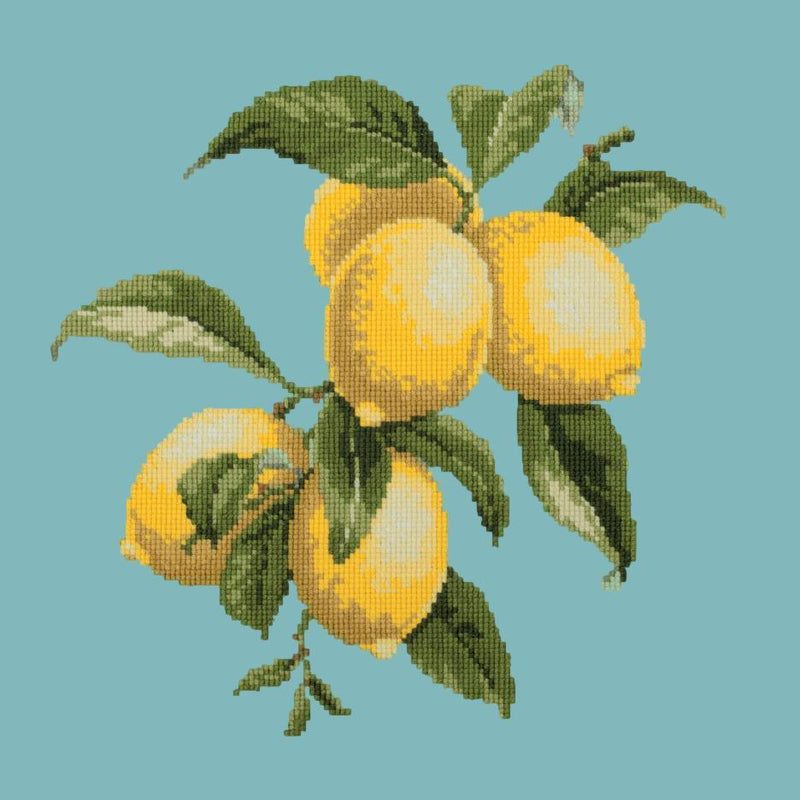 Lemons Needlepoint Kit Elizabeth Bradley Design Duck Egg Blue