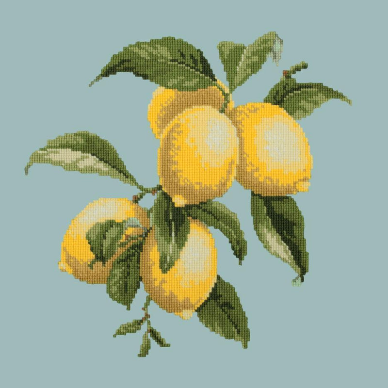 Lemons Needlepoint Kit Elizabeth Bradley Design Pale Blue