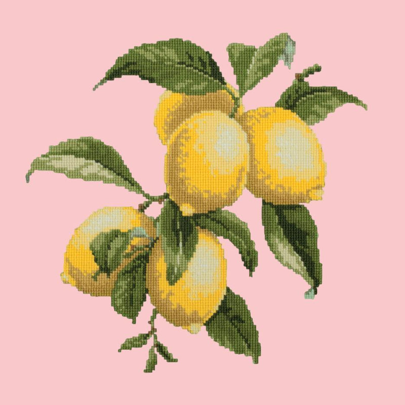 Lemons Needlepoint Kit Elizabeth Bradley Design Pale Rose