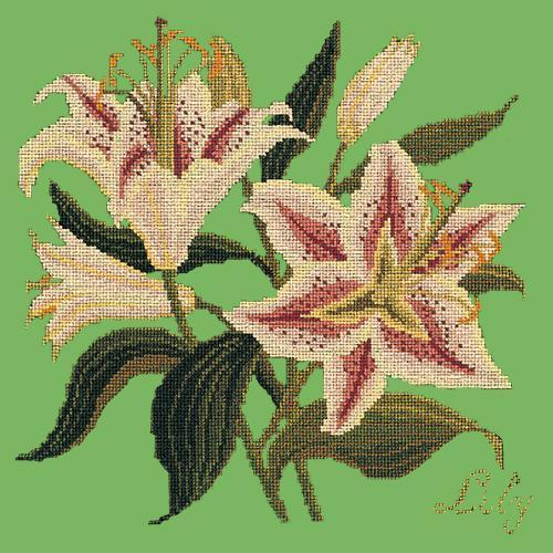 Lily Needlepoint Kit Elizabeth Bradley Design Grass Green