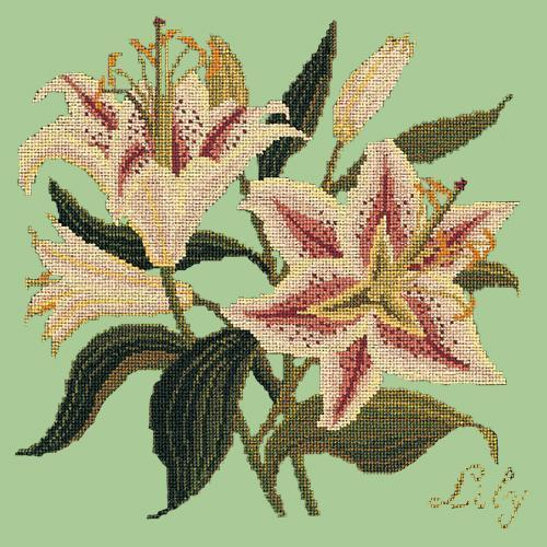 Lily Needlepoint Kit Elizabeth Bradley Design Pale Green