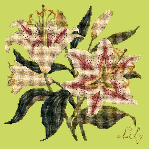 Lily Needlepoint Kit Elizabeth Bradley Design Pale Lime
