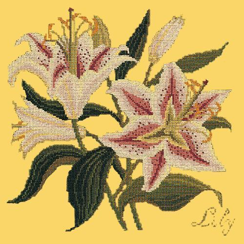 Lily Needlepoint Kit Elizabeth Bradley Design Sunflower Yellow