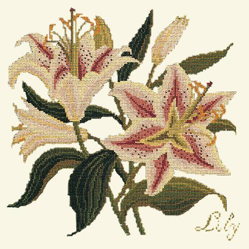 Lily Needlepoint Kit Elizabeth Bradley Design Winter White
