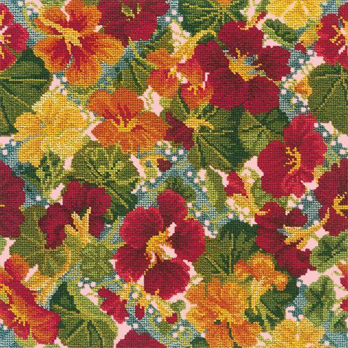 Nasturtium Trellis Needlepoint Kit Elizabeth Bradley Design Pale Rose