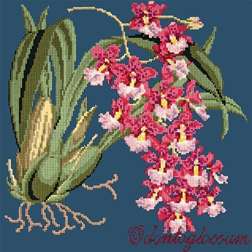 Odontoglossum (Tiger Orchid) Needlepoint Kit Elizabeth Bradley Design Dark Blue