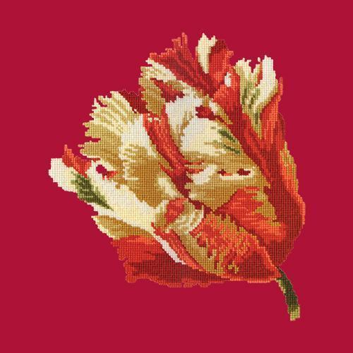 Parrot Tulip Needlepoint Kit Elizabeth Bradley Design Bright Red
