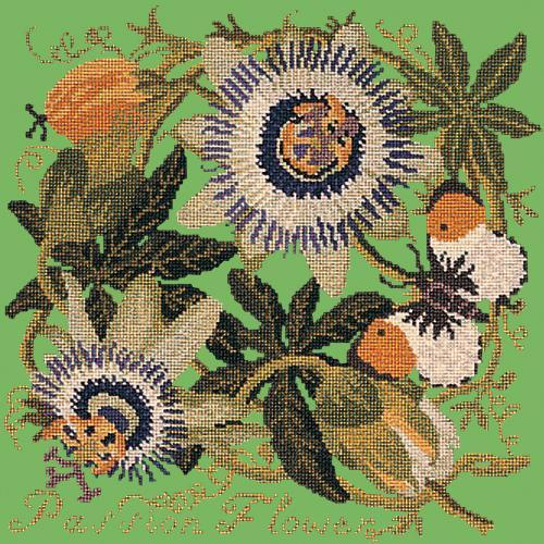 Passion Flower Needlepoint Kit Elizabeth Bradley Design Grass Green