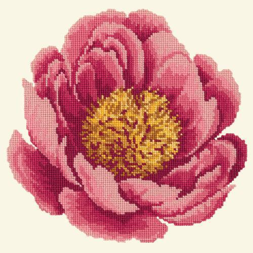 Peony Needlepoint Kit Elizabeth Bradley Design Winter White