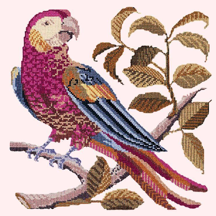 Pete the Parrot Needlepoint Kit Elizabeth Bradley Design Cream