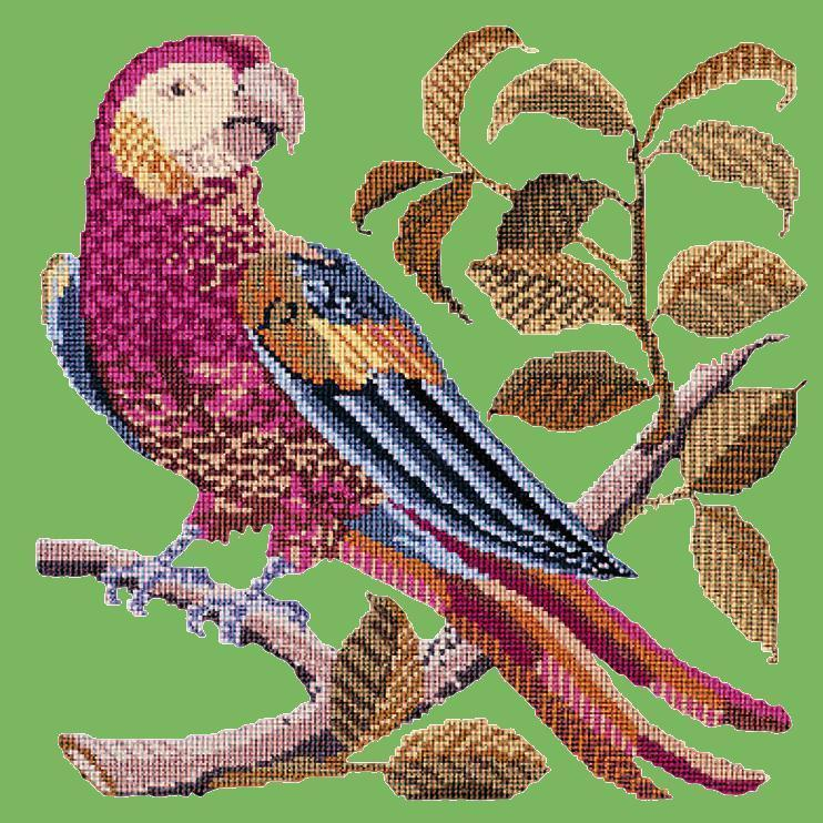 Pete the Parrot Needlepoint Kit Elizabeth Bradley Design Grass Green