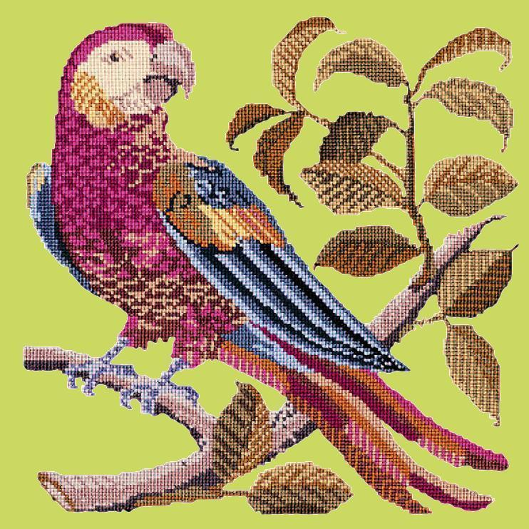 Pete the Parrot Needlepoint Kit Elizabeth Bradley Design Pale Lime