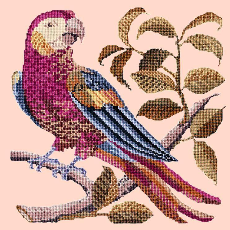 Pete the Parrot Needlepoint Kit Elizabeth Bradley Design Salmon Pink