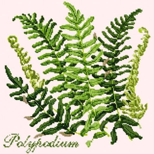 Polypodium Needlepoint Kit Elizabeth Bradley Design Cream