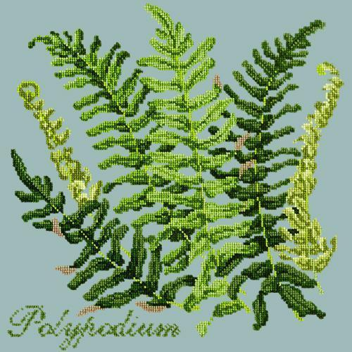 Polypodium Needlepoint Kit Elizabeth Bradley Design Pale Blue