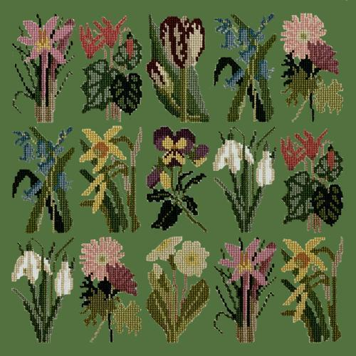 Primavera Needlepoint Kit Elizabeth Bradley Design Dark Green