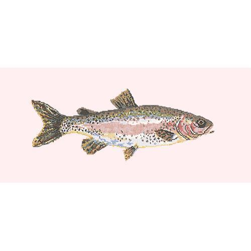 Rainbow Trout Needlepoint Kit Elizabeth Bradley Design Cream