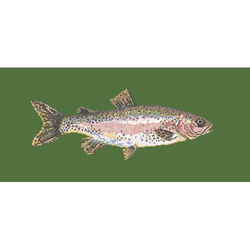 Rainbow Trout Needlepoint Kit Elizabeth Bradley Design Dark Green