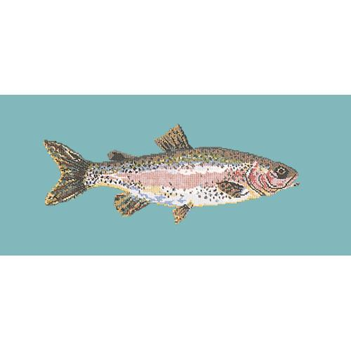 Rainbow Trout Needlepoint Kit Elizabeth Bradley Design Duck Egg Blue