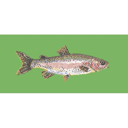 Rainbow Trout Needlepoint Kit Elizabeth Bradley Design Grass Green