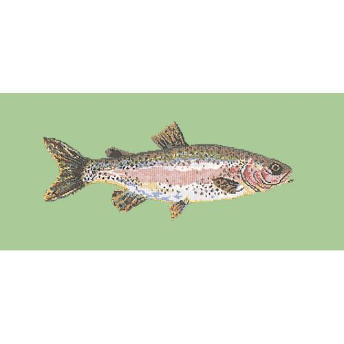 Rainbow Trout Needlepoint Kit Elizabeth Bradley Design Pale Green