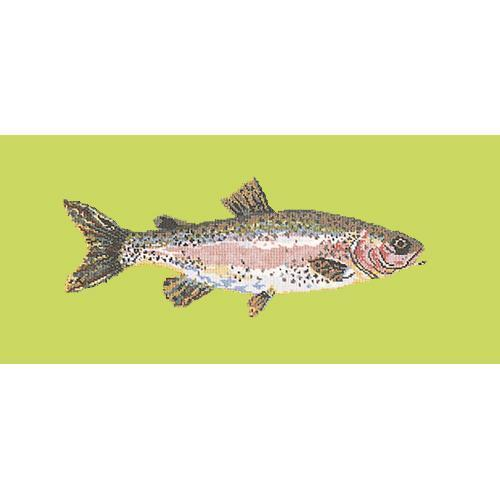 Rainbow Trout Needlepoint Kit Elizabeth Bradley Design Pale Lime
