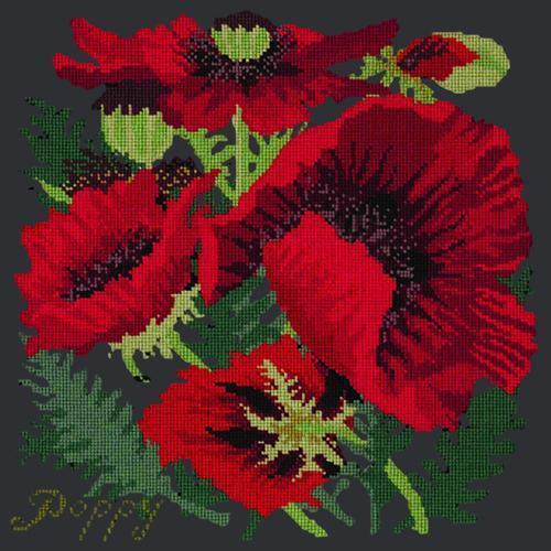 Red Poppy Needlepoint Kit Elizabeth Bradley Design Black