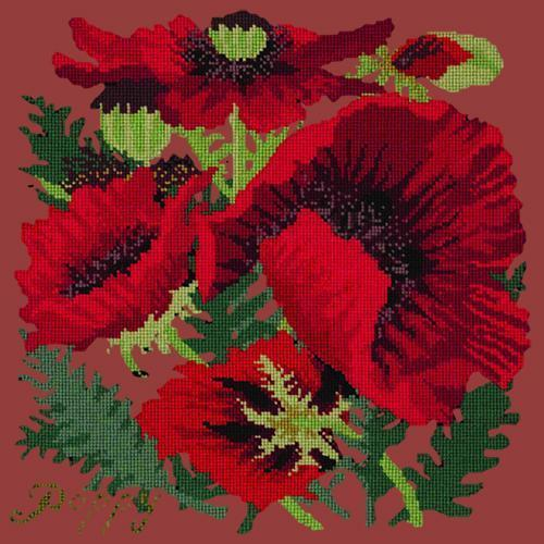 Red Poppy Needlepoint Kit Elizabeth Bradley Design Dark Red