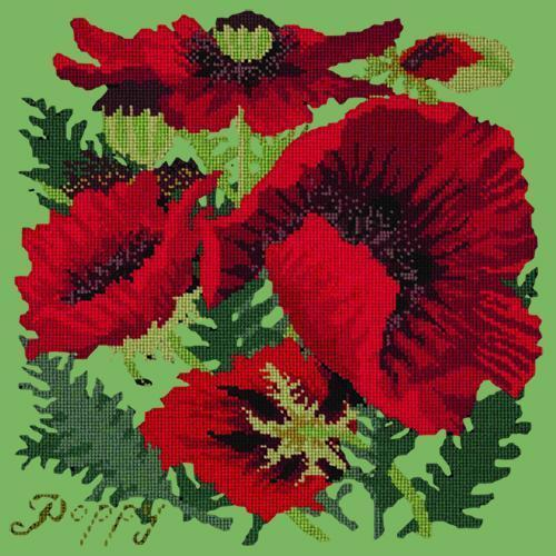 Red Poppy Needlepoint Kit Elizabeth Bradley Design Grass Green
