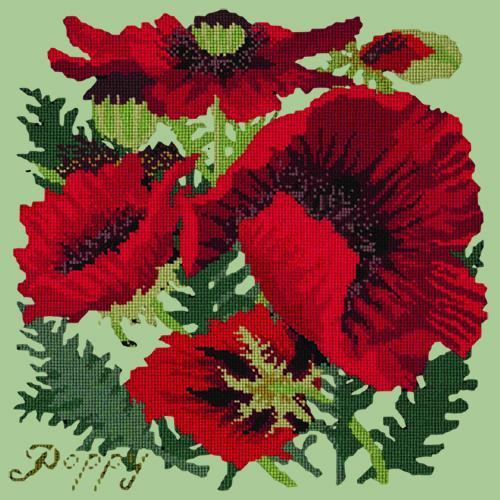 Red Poppy Needlepoint Kit Elizabeth Bradley Design Pale Green