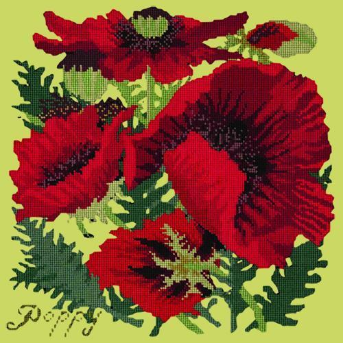 Red Poppy Needlepoint Kit Elizabeth Bradley Design Pale Lime