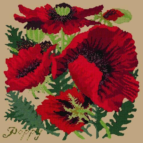 Red Poppy Needlepoint Kit Elizabeth Bradley Design Sand