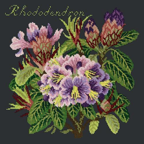 Rhododendron Needlepoint Kit Elizabeth Bradley Design Black