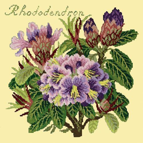 Rhododendron Needlepoint Kit Elizabeth Bradley Design Butter Yellow
