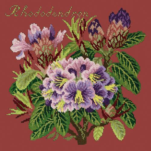 Rhododendron Needlepoint Kit Elizabeth Bradley Design Dark Red