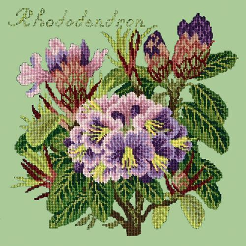 Rhododendron Needlepoint Kit Elizabeth Bradley Design Pale Green