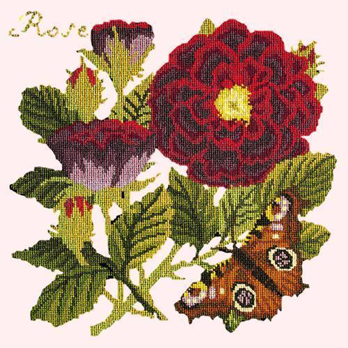 Rose Needlepoint Kit Elizabeth Bradley Design Cream
