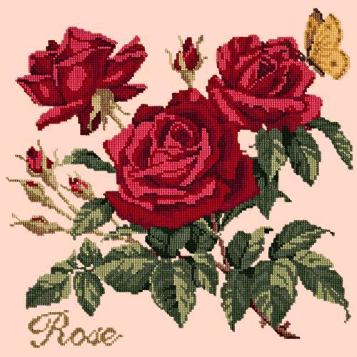 Rose Needlepoint Kit Elizabeth Bradley Design Salmon Pink