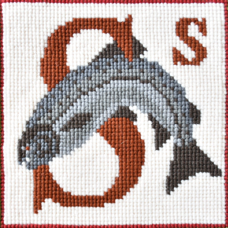 S-Salmon Needlepoint Kit Elizabeth Bradley Design