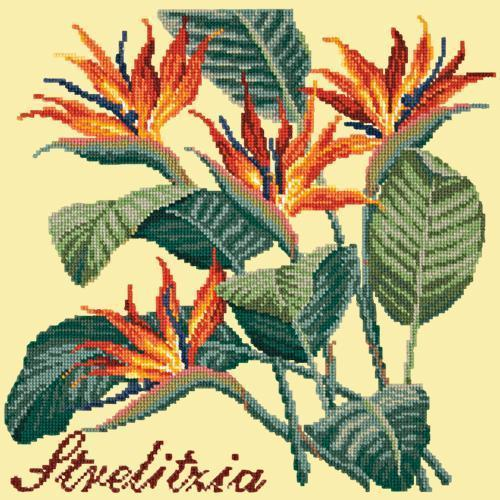 Strelitzia (Bird of Paradise) Needlepoint Kit Elizabeth Bradley Design Butter Yellow