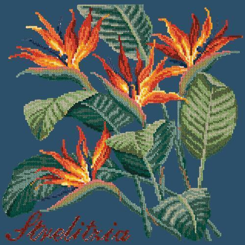 Strelitzia (Bird of Paradise) Needlepoint Kit Elizabeth Bradley Design Dark Blue
