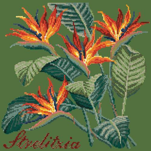Strelitzia (Bird of Paradise) Needlepoint Kit Elizabeth Bradley Design Dark Green