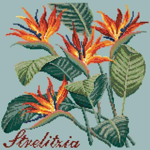 Strelitzia (Bird of Paradise) Needlepoint Kit Elizabeth Bradley Design Pale Blue