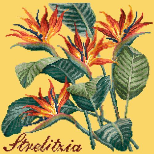 Strelitzia (Bird of Paradise) Needlepoint Kit Elizabeth Bradley Design Sunflower Yellow