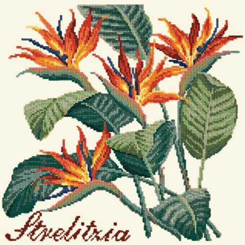 Strelitzia (Bird of Paradise) Needlepoint Kit Elizabeth Bradley Design Winter White