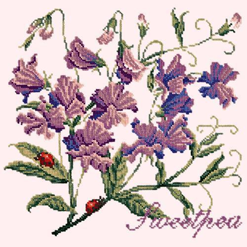 Sweetpea Needlepoint Kit Elizabeth Bradley Design Cream